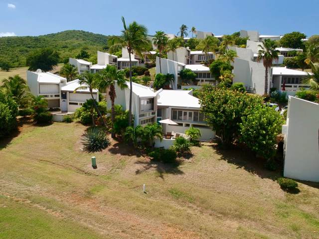 435 Teagues Bay Eb, St. Croix, VI 00000 (MLS #19-1589) :: Hanley Team | Farchette & Hanley Real Estate