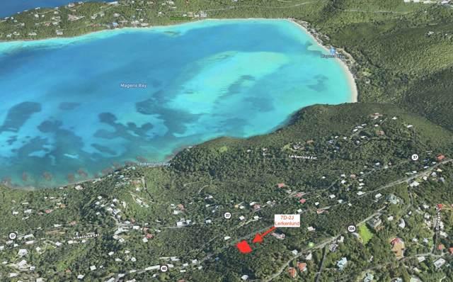 7D-2J Lerkenlund Gns, St. Thomas, VI 00802 (MLS #19-1626) :: Hanley Team | Farchette & Hanley Real Estate