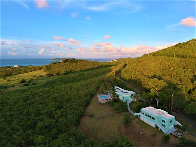 8 Seven Hills Ea, St. Croix, VI 00820 (MLS #19-1671) :: Coldwell Banker Stout Realty