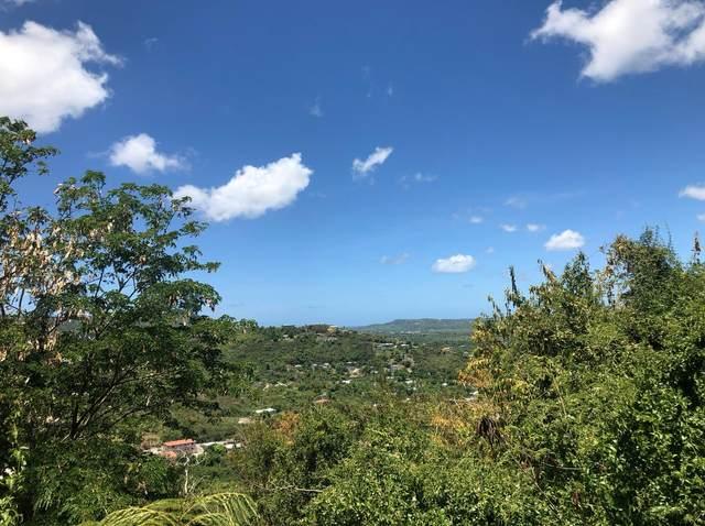 34 St. George Pr, St. Croix, VI 00840 (MLS #19-1692) :: Hanley Team | Farchette & Hanley Real Estate