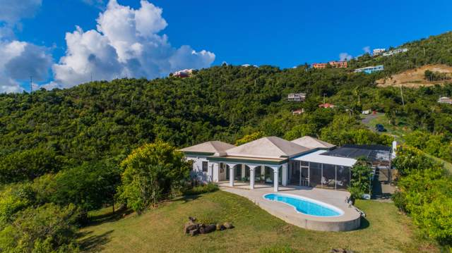 71 Concordia Nb, St. Croix, VI 00850 (MLS #19-1775) :: Hanley Team | Farchette & Hanley Real Estate