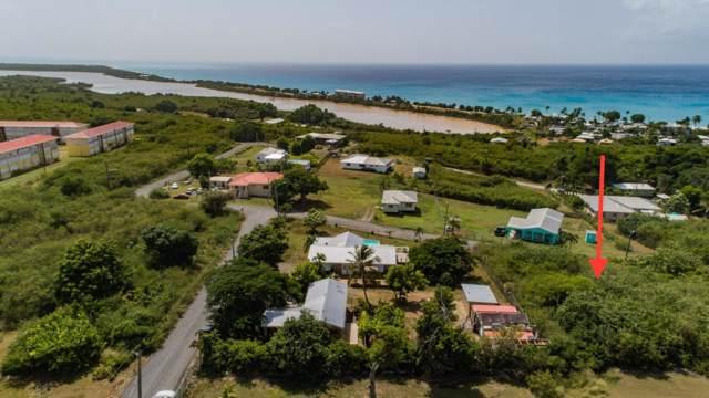 REM 184 Smithfield We, St. Croix, VI 00840 (MLS #19-1880) :: Hanley Team | Farchette & Hanley Real Estate