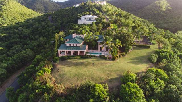 13 Prosperity Nb, St. Croix, VI 00850 (MLS #19-1945) :: Hanley Team | Farchette & Hanley Real Estate
