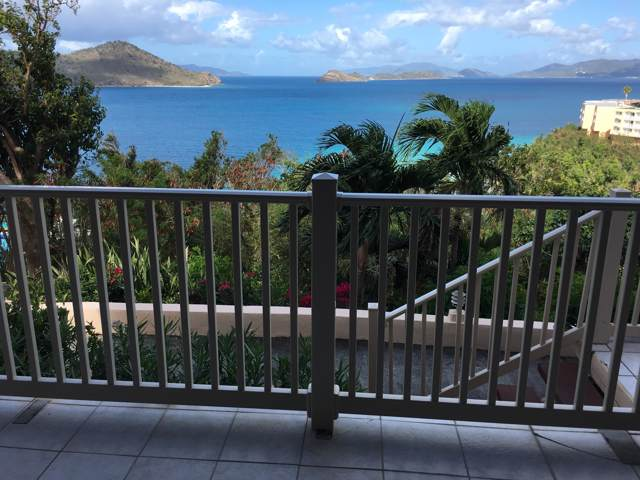 13 Smith Bay Ee, St. Thomas, VI 00802 (MLS #19-2003) :: Coldwell Banker Stout Realty