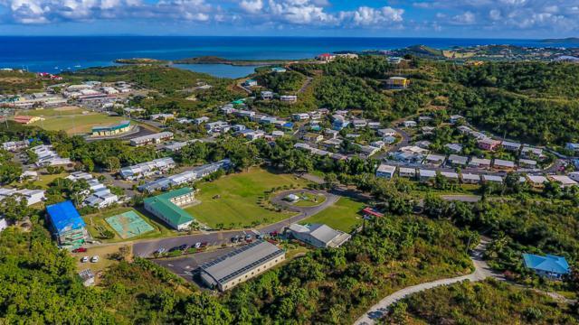 67-6 Mt. Welcome Ea, St. Croix, VI 00820 (MLS #19-213) :: Hanley Team | Farchette & Hanley Real Estate