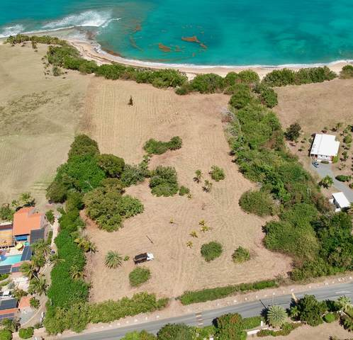7,7A Shoys (The) Ea, St. Croix, VI 00820 (MLS #19-335) :: Coldwell Banker Stout Realty