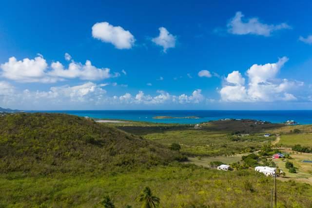 41 Seven Hills Ea, St. Croix, VI 00820 (MLS #19-377) :: Hanley Team | Farchette & Hanley Real Estate
