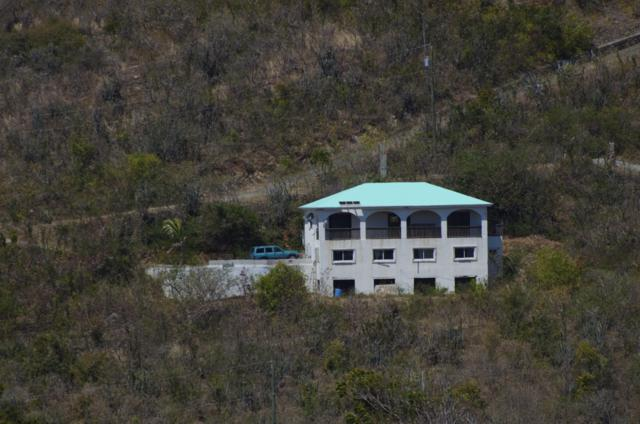 54 Catherine's Hope Eb, St. Croix, VI 00820 (MLS #19-389) :: Hanley Team | Farchette & Hanley Real Estate