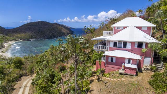 4-46 Tabor & Harmony Ee, St. Thomas, VI 00802 (MLS #19-421) :: Coldwell Banker Stout Realty