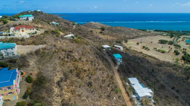 60 Catherine's Hope Eb, St. Croix, VI 00820 (MLS #19-423) :: Hanley Team | Farchette & Hanley Real Estate