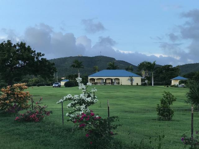 Rem 25, et Carlton We, St. Croix, VI 00840 (MLS #19-425) :: Hanley Team | Farchette & Hanley Real Estate