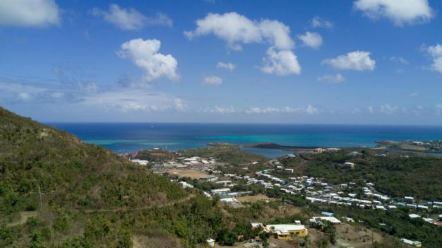 64A of 67 Mt. Welcome Ea, St. Croix, VI 00820 (MLS #19-579) :: Hanley Team | Farchette & Hanley Real Estate
