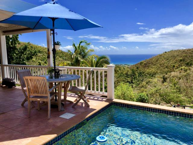 109 Little La Grange We, St. Croix, VI 00850 (MLS #19-590) :: Hanley Team | Farchette & Hanley Real Estate