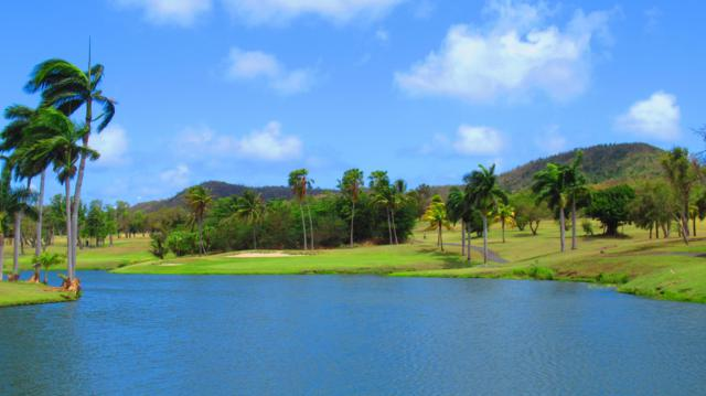 64 River Pr, St. Croix, VI 00820 (MLS #19-735) :: Hanley Team | Farchette & Hanley Real Estate