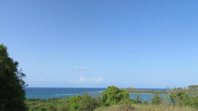 49 Salt River Nb, St. Croix, VI 00840 (MLS #19-896) :: Hanley Team | Farchette & Hanley Real Estate