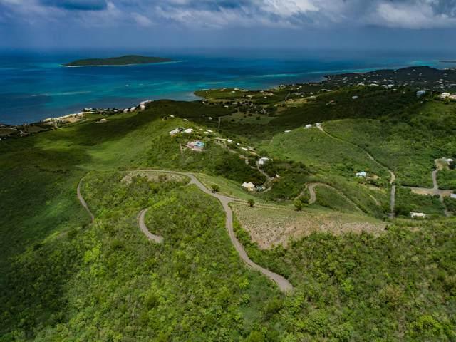 110 Solitude Eb, St. Croix, VI 00820 (MLS #20-1002) :: Hanley Team   Farchette & Hanley Real Estate