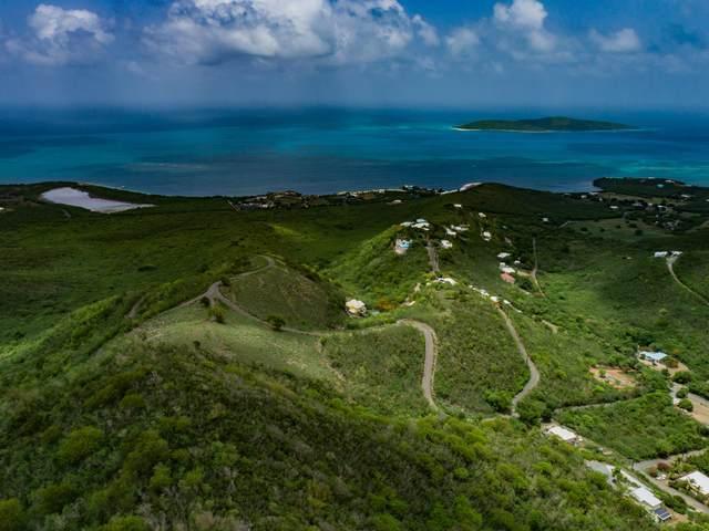 111 Solitude Eb, St. Croix, VI 00820 (MLS #20-1003) :: Hanley Team   Farchette & Hanley Real Estate