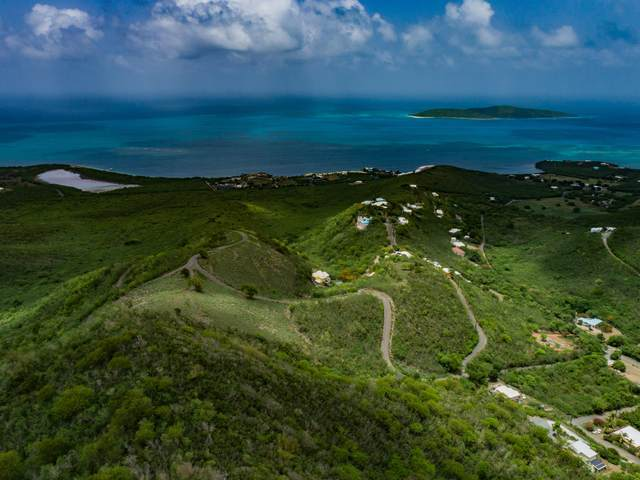 113 Solitude Eb, St. Croix, VI 00820 (MLS #20-1005) :: Hanley Team   Farchette & Hanley Real Estate
