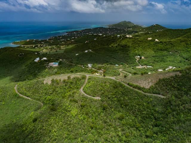 116 Solitude Eb, St. Croix, VI 00820 (MLS #20-1008) :: Hanley Team   Farchette & Hanley Real Estate
