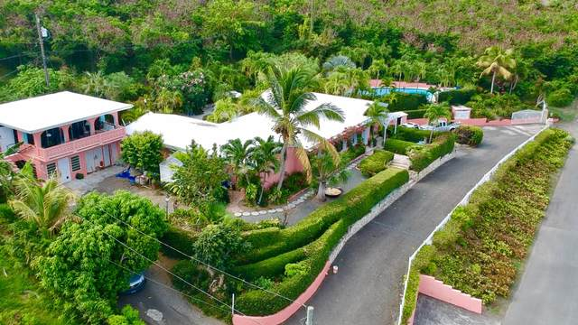 41 Shoys (The) Ea, St. Croix, VI 00820 (MLS #20-1139) :: Coldwell Banker Stout Realty
