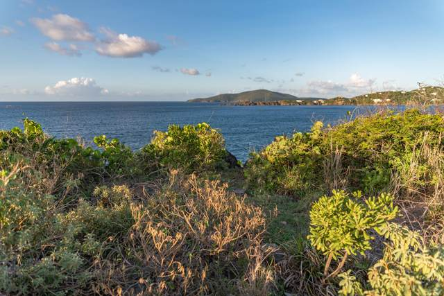 4-30-6 Hull Lns, St. Thomas, VI 00802 (MLS #20-1175) :: Coldwell Banker Stout Realty