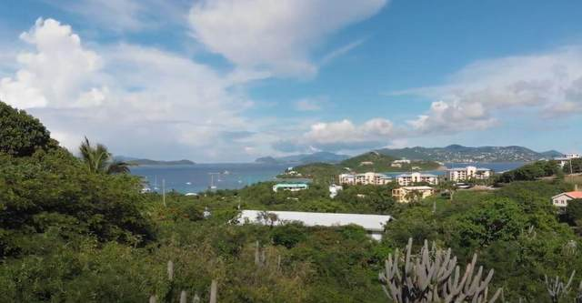 9-40 Nazareth Rh, St. Thomas, VI 00802 (MLS #20-1182) :: Hanley Team | Farchette & Hanley Real Estate