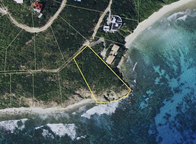 124 Fish Bay Reef, St. John, VI 00830 (MLS #20-1360) :: The Boulger Team @ Calabash Real Estate