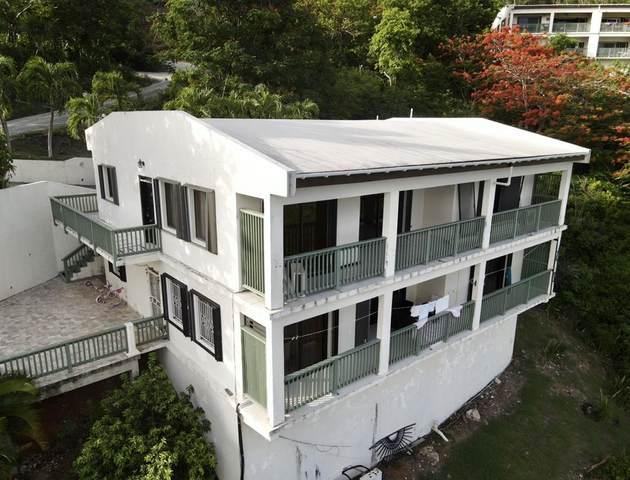 3 Frenchman Bay Fb, St. Thomas, VI 00802 (MLS #20-1375) :: Hanley Team | Farchette & Hanley Real Estate