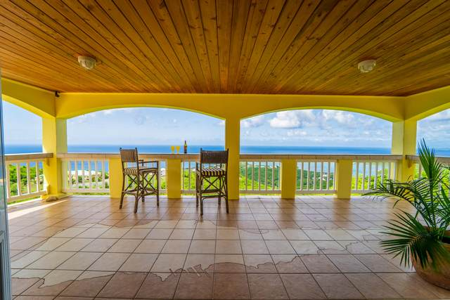 19 and 19A Concordia Nb, St. Croix, VI 00820 (MLS #20-1429) :: Coldwell Banker Stout Realty
