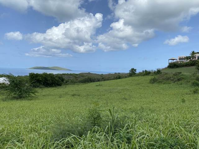101B Green Cay Ea, St. Croix, VI 00820 (MLS #20-1582) :: Coldwell Banker Stout Realty