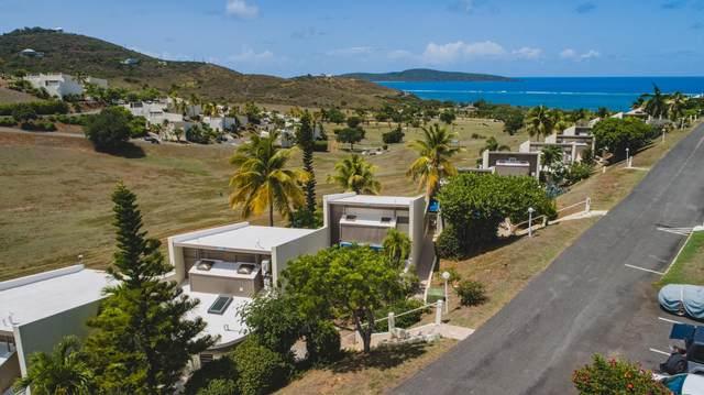 145 Teagues Bay Eb, St. Croix, VI 00820 (MLS #20-1651) :: Hanley Team | Farchette & Hanley Real Estate