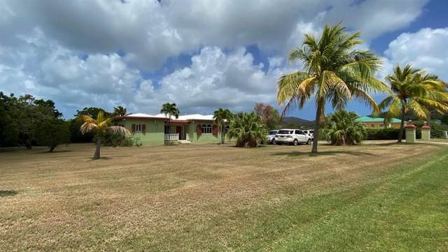 51 Southgate Farm Ea, St. Croix, VI 00820 (MLS #20-931) :: Hanley Team | Farchette & Hanley Real Estate