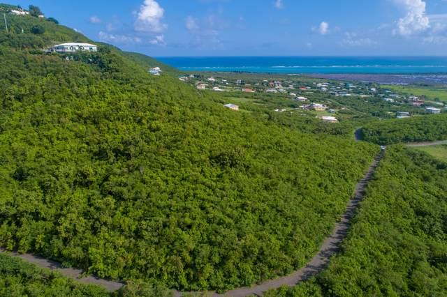 193 Union & Mt. Wash Ea, St. Croix, VI 00820 (MLS #21-1026) :: Hanley Team | Farchette & Hanley Real Estate