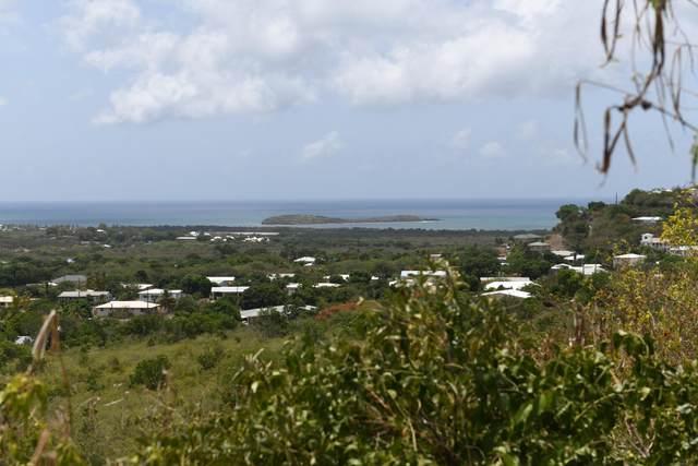 191 Union & Mt. Wash Ea, St. Croix, VI 00820 (MLS #21-1027) :: Hanley Team | Farchette & Hanley Real Estate