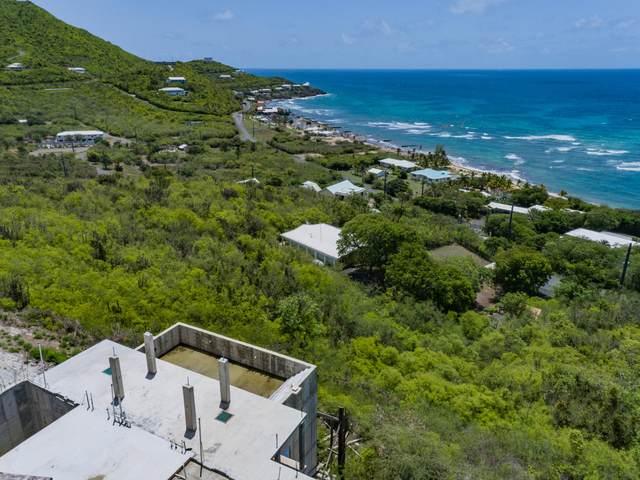 71 South Slob Eb, St. Croix, VI 00820 (MLS #21-1252) :: Hanley Team | Farchette & Hanley Real Estate