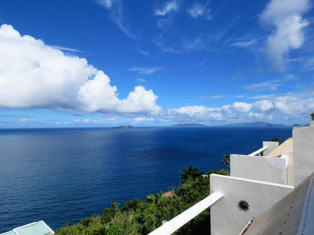43U Lovenlund Gns, St. Thomas, VI 00802 (MLS #21-1253) :: Coldwell Banker Stout Realty