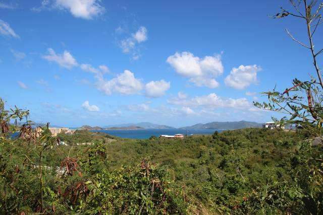 100-21 Smith Bay Ee, St. Thomas, VI 00802 (MLS #21-235) :: Coldwell Banker Stout Realty
