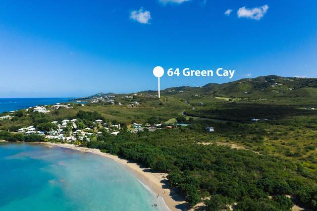 64 Green Cay Ea, St. Croix, VI 00820 (MLS #21-61) :: Coldwell Banker Stout Realty