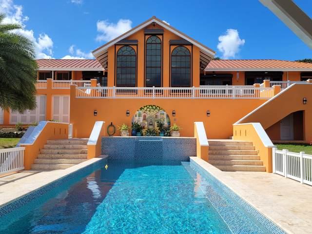 25 River Pr, St. Croix, VI 00820 (MLS #21-66) :: Coldwell Banker Stout Realty