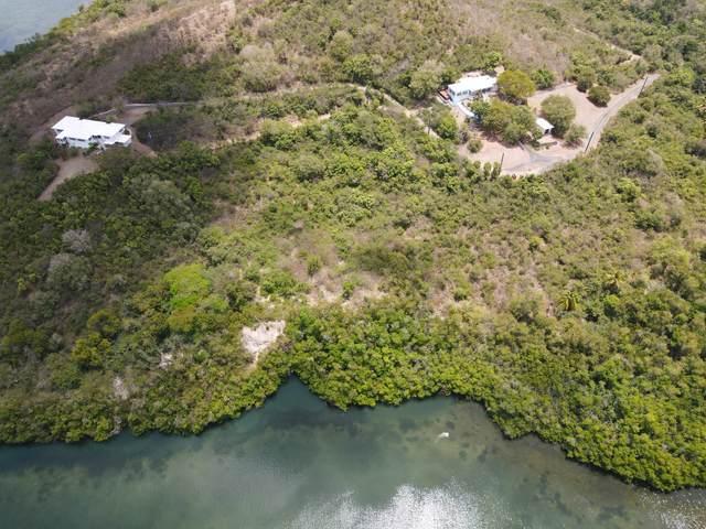 7,8,9,11 Altona Ea, St. Croix, VI 00820 (MLS #21-690) :: Hanley Team | Farchette & Hanley Real Estate
