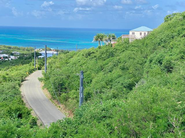 189 Cotton Valley Eb, St. Croix, VI 00820 (MLS #21-757) :: The Boulger Team @ Calabash Real Estate