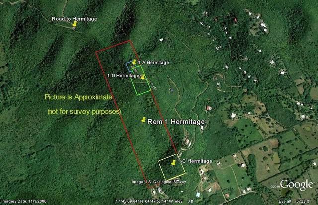 Rem 1 Hermitage Ki, St. Croix, VI 00820 (MLS #21-884) :: Coldwell Banker Stout Realty