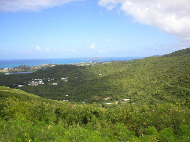 57,61,61A Recovery Welcome Ea, St. Croix, VI 00820 (MLS #12-1782) :: Hanley Team | Farchette & Hanley Real Estate