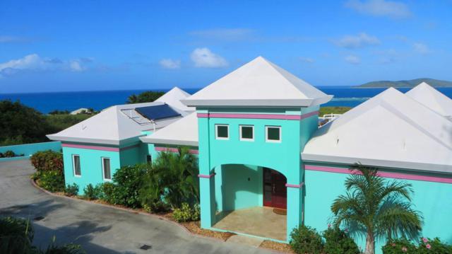 109 Green Cay Ea, St. Croix, VI 00820 (MLS #15-363) :: Hanley Team | Farchette & Hanley Real Estate