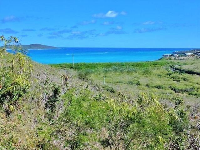 Rem 29 Green Cay Ea, St. Croix, VI 00820 (MLS #16-105) :: Coldwell Banker Stout Realty