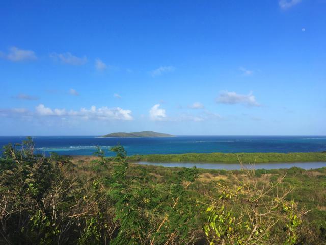 111 Green Cay Ea, St. Croix, VI 00820 (MLS #17-266) :: Hanley Team | Farchette & Hanley Real Estate