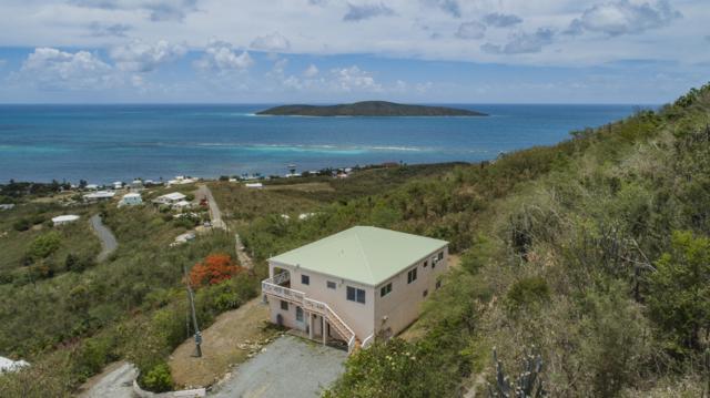 197 Cotton Valley Eb, St. Croix, VI 00820 (MLS #18-1182) :: Hanley Team   Farchette & Hanley Real Estate
