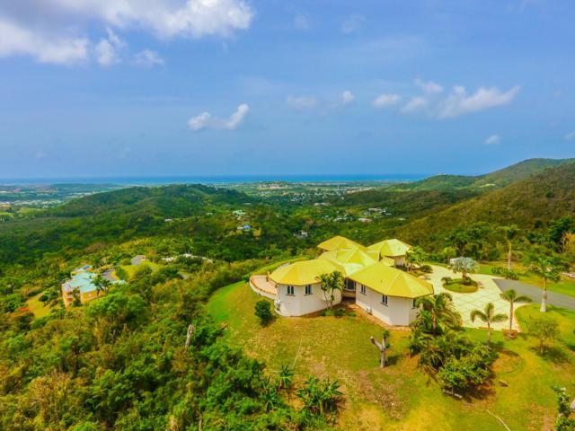 53 River Pr, St. Croix, VI 00850 (MLS #18-450) :: Hanley Team | Farchette & Hanley Real Estate