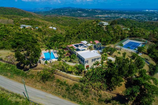 Rem 3 &3-A Betsy's Jewel Nb, St. Croix, VI 00820 (MLS #19-1260) :: Hanley Team | Farchette & Hanley Real Estate