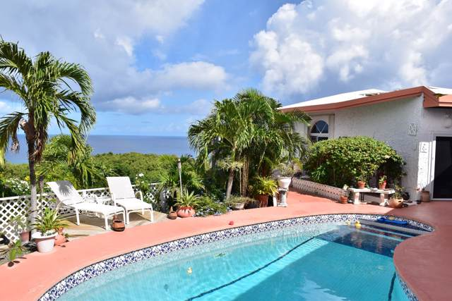 124 La Vallee Nb, St. Croix, VI 00820 (MLS #19-1580) :: Coldwell Banker Stout Realty